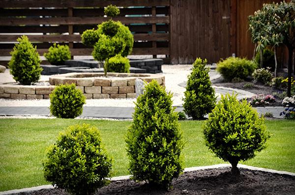 amenagement jardin allojardin