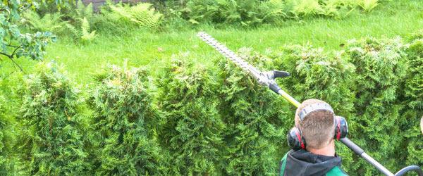 credit impot travaux jardinier