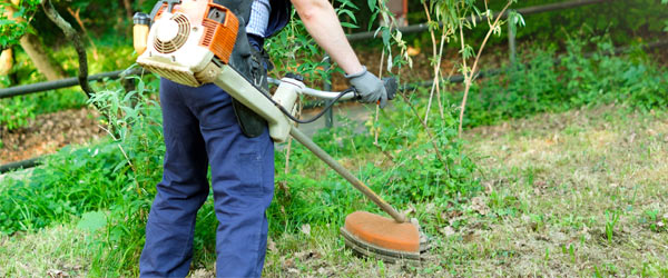 debroussaillage jardinier