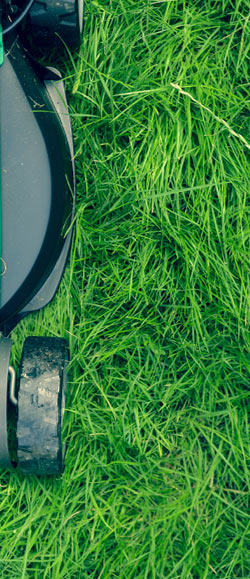 Devis jardin recevez des devis paysagiste et jardinier for Tarif paysagiste