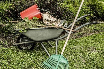 jardin nettoyage terrain