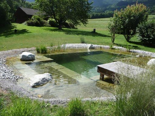 jardin japonais comment faire un jardin zen arbuste id es photos. Black Bedroom Furniture Sets. Home Design Ideas