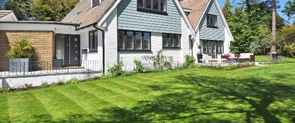 pelouse jardin 1