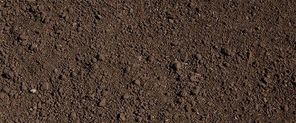 semer gazon terre