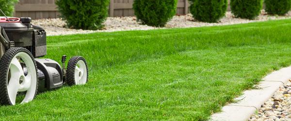 tarif horaire jardinier tonte